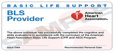 BLS AND ACLS Classes in Hyderabad | Medline Academy